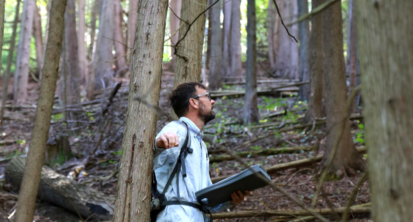 TRCA terrestrial monitoring team studying plant and animal species in a forest area