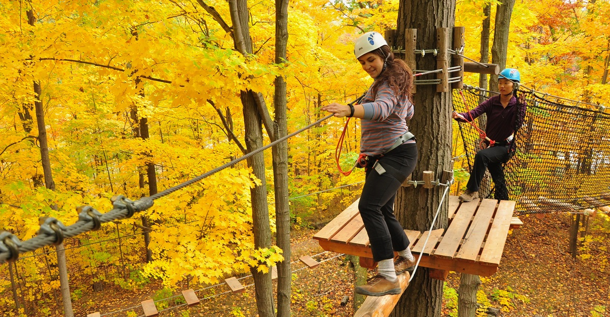 young women on treetop trekking course at bruces mill conservation park