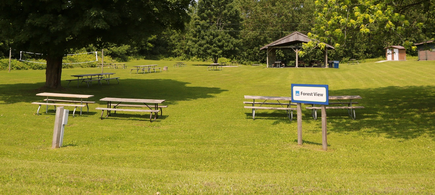 picnic area at glen haffy conservation area