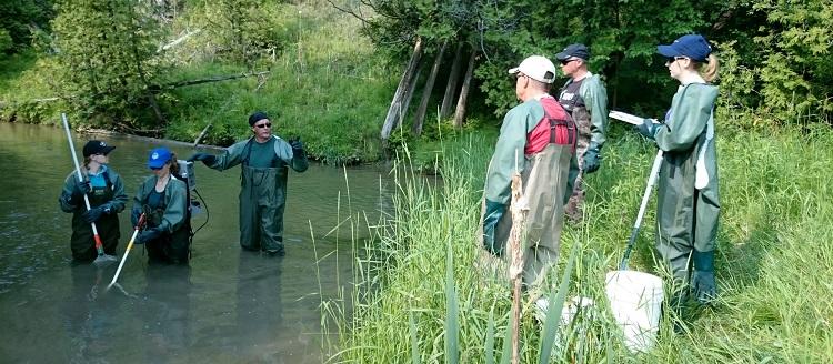 environmental professionals participate in Ontario Stream Assessment Protocol course