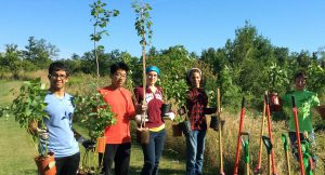 Durham Conservation Youth Corps - Pine Grove Planting @ Pinegrove Park