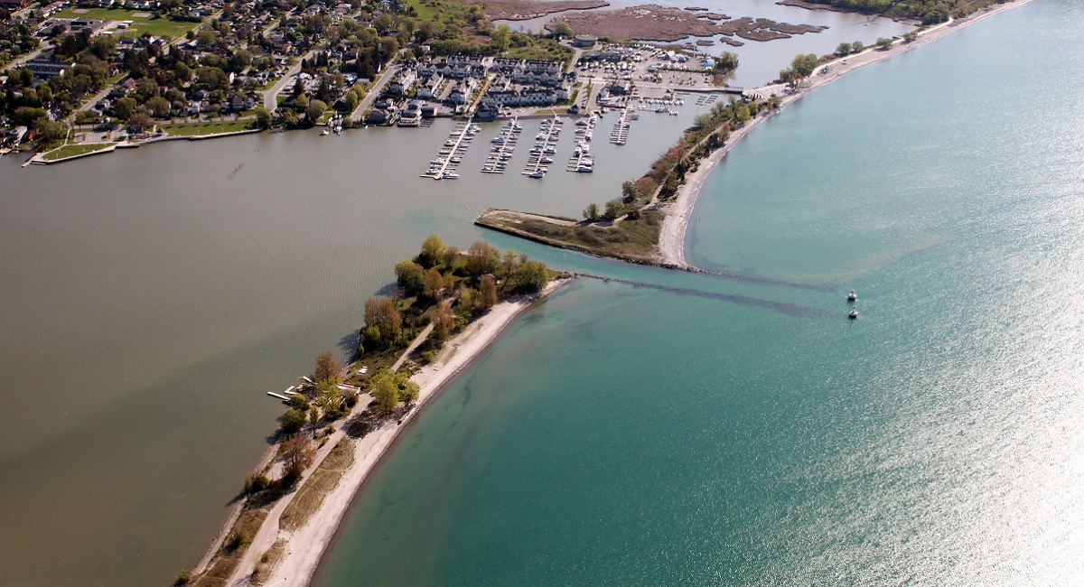 Aerial view of Frenchman's Bay