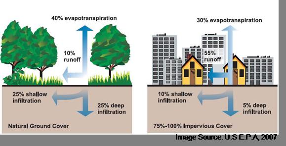 impact of stormwater runoff in urban areas