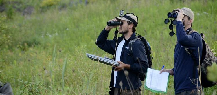 TRCA terrestrial monitoring biological inventories