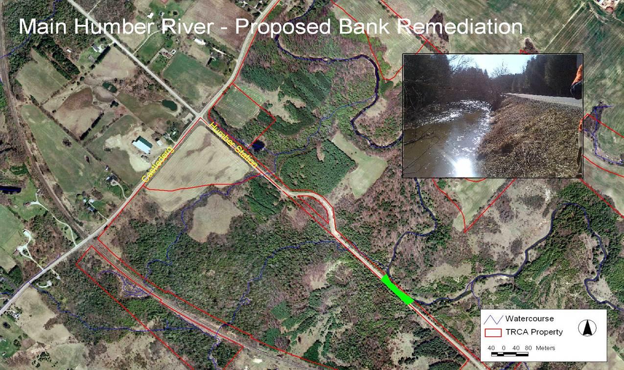 Main Humber River Proposed Bank Remediation
