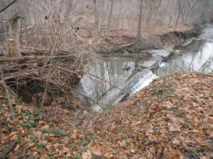 Exposed pipe and concrete encasement in wilket creek