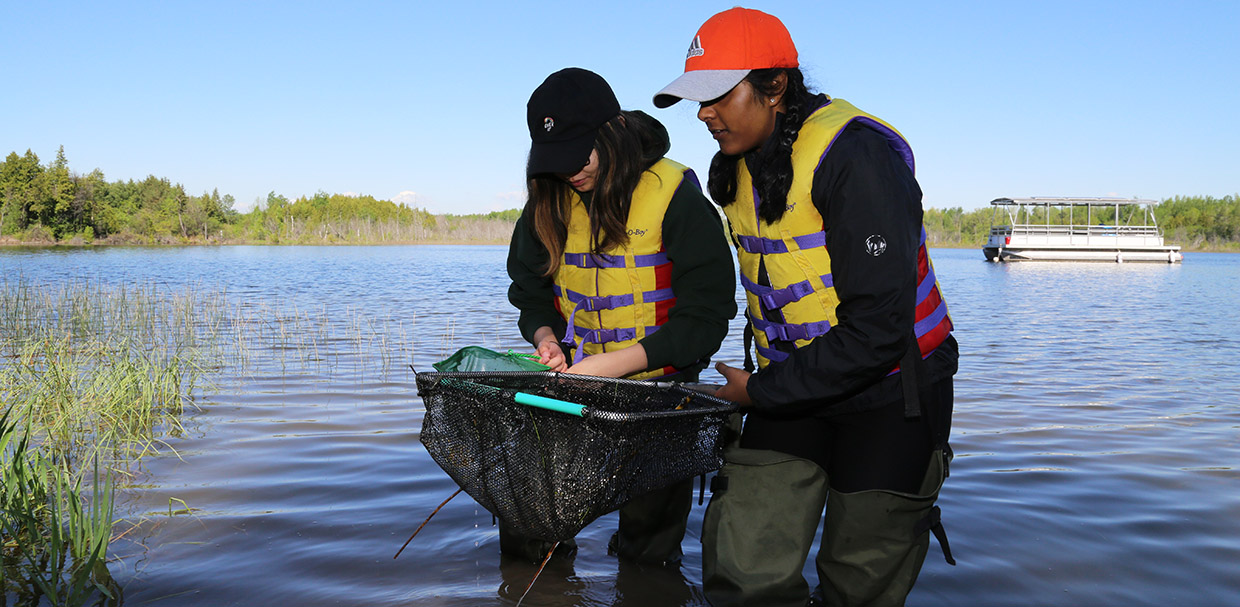 students conduct shoreline survey at Lake St George Field Centre
