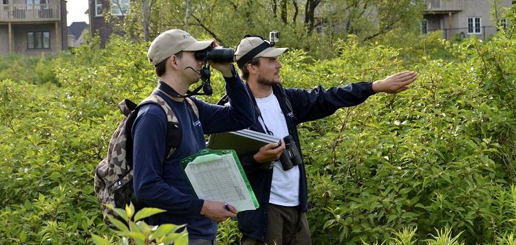 TRCA environmental monitoring breeding bird survey