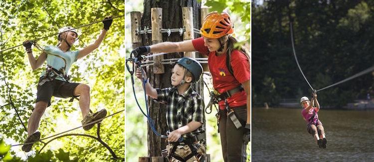 Treetop Trekking at Heart Lake Conservation Park