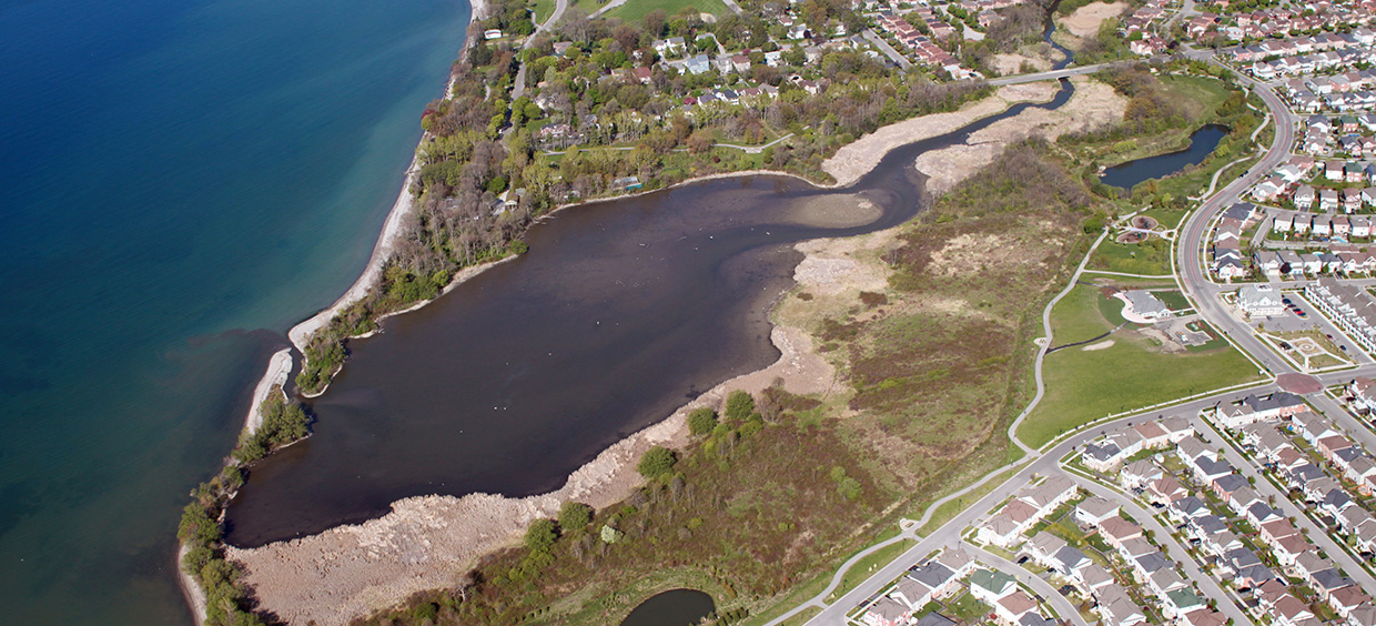 aerial view of the Carruthers Creek shoreline