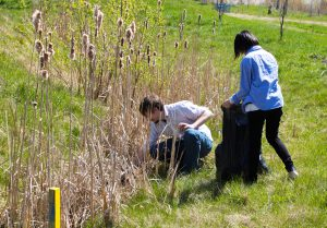 Toronto Conservation Youth Corps - Community Cleanup at the Meadoway @ The Meadoway (Gatineau Hydro Corridor)