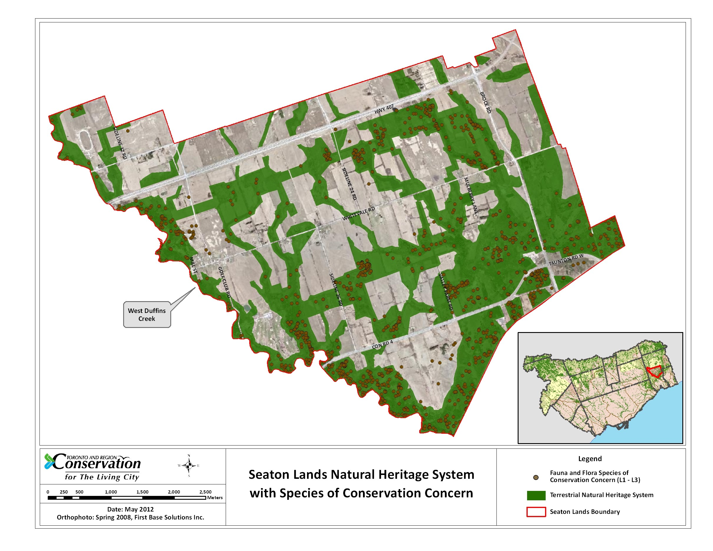 Map showing scoring of species in Seaton Lands Natural Heritage System