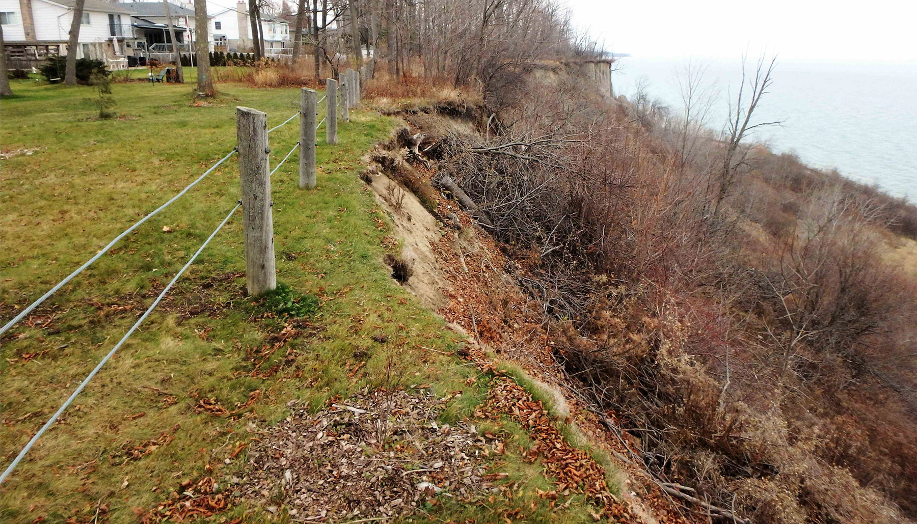 debris buildup at the top of the Scarborough Bluffs