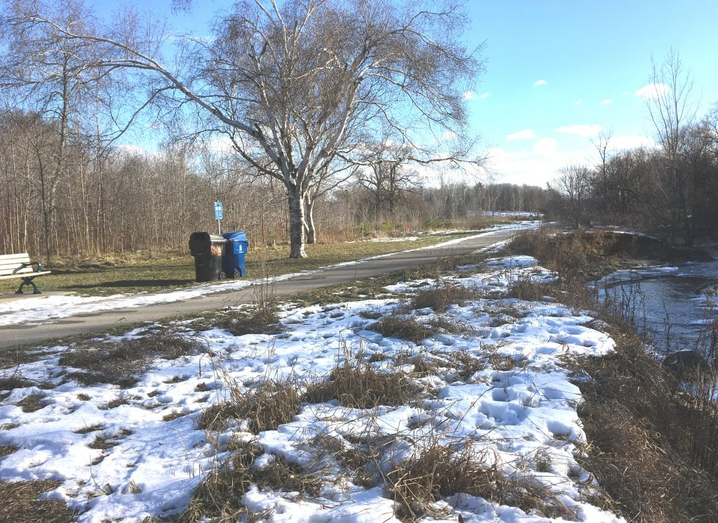 Watercourse on right with asphalt trail at top of bank on left.