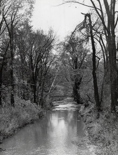 Don Valley ravine, 1944