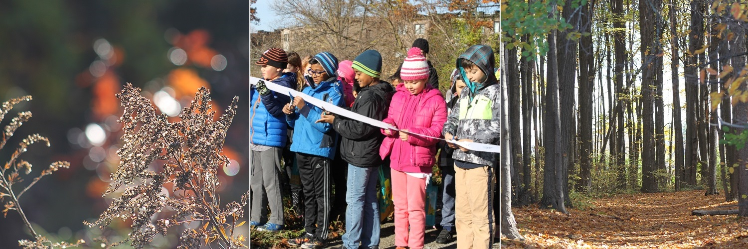 Images from the opening of the new Oak Ridges Moraine trail