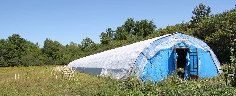 greenhouse at McVean Farm in Peel Region