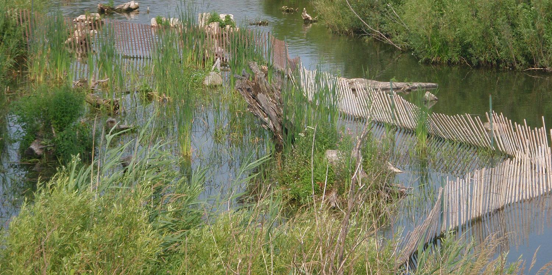 aquatic habitat restoration work underway at Tommy Thompson Park