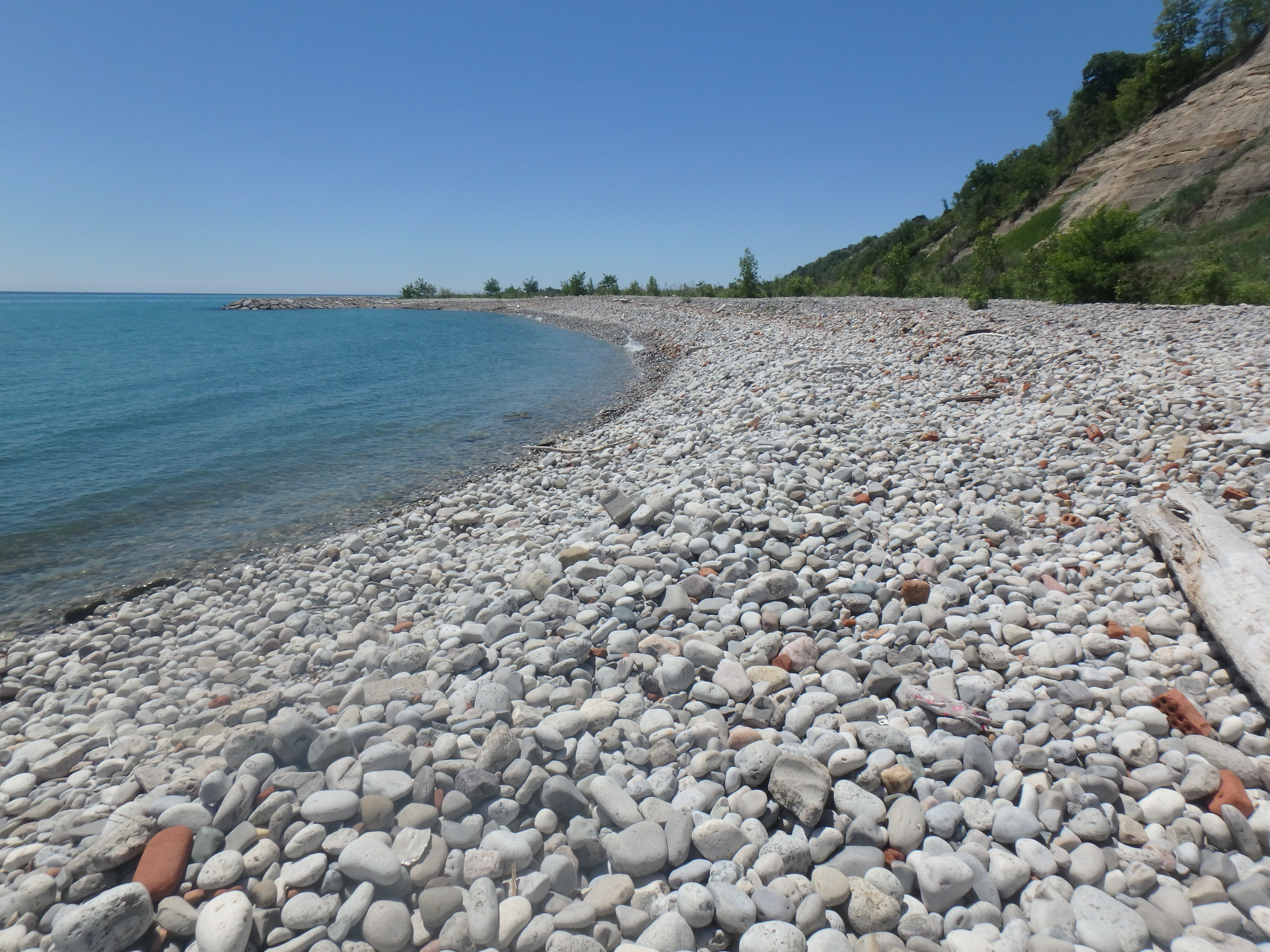 Example of a cobble beach. Source: TRCA, 2018.