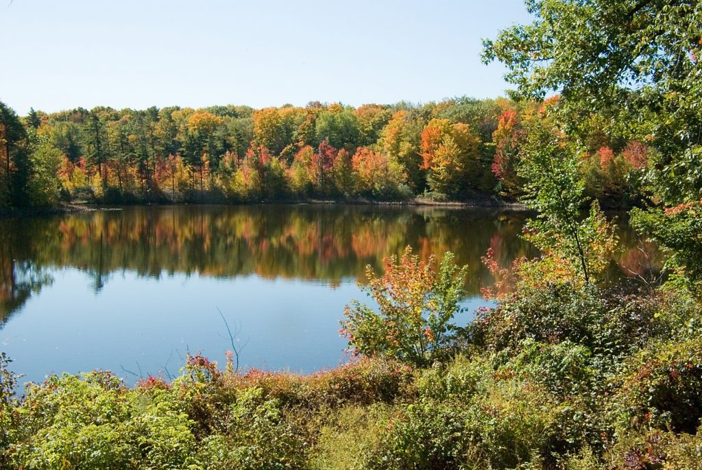 Fall colours at Bond Lake