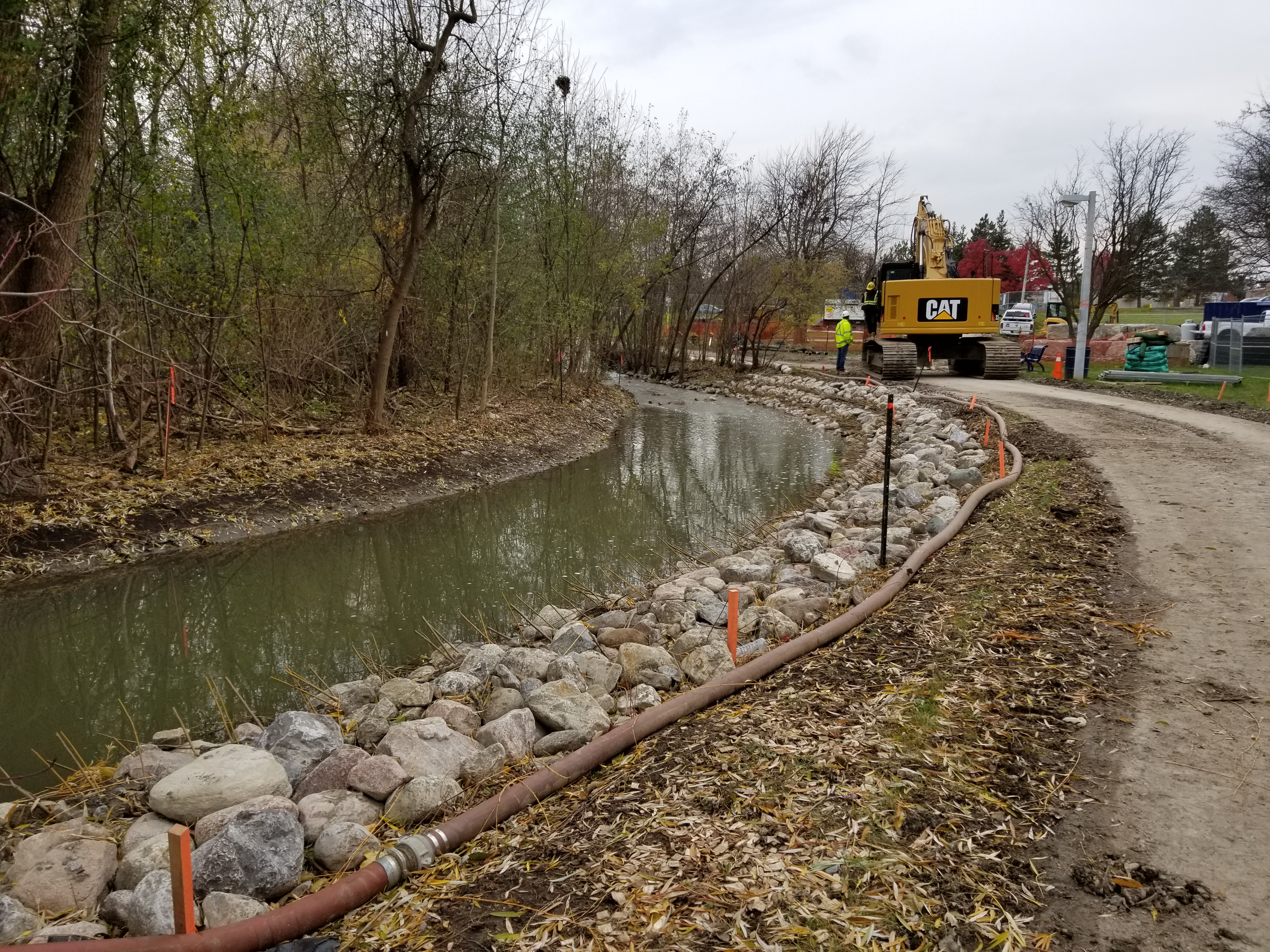 Photo of the recently installed vegetated buttress at the downstream portion of the Maitland Park Stream Restoration Project area