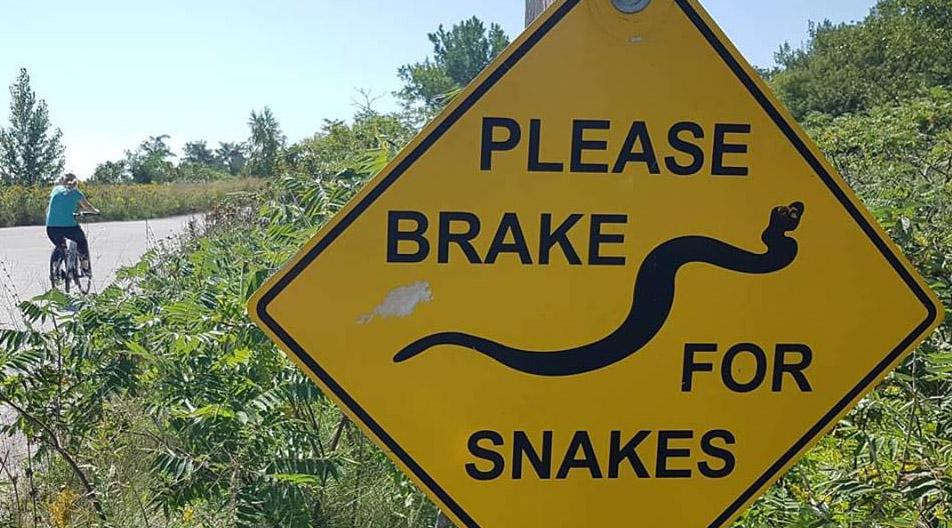 Brake for Snakes road sign