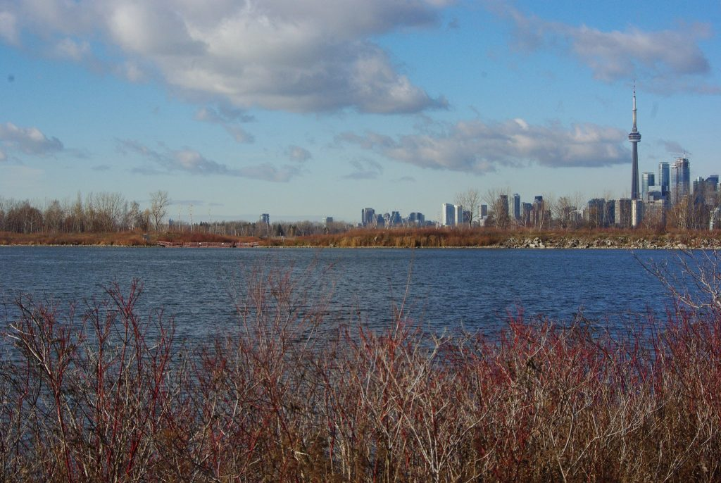 A late fall view of Toronto from Tommy Thompson Park