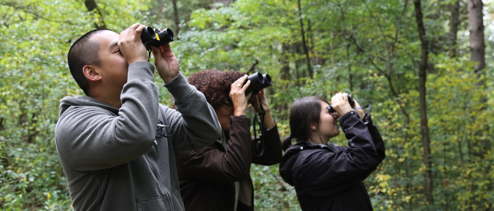 adult learners take part in nature workshop at Kortright Centre