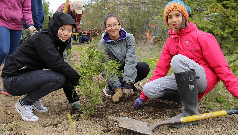 Oak Ridges tree planting event