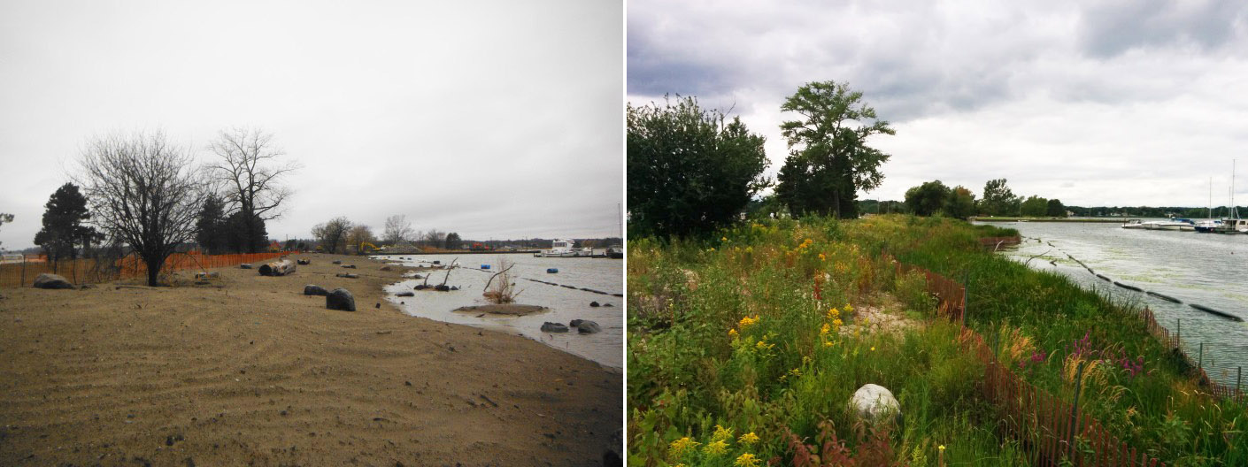 Frenchman's Bay shoreline restoration project