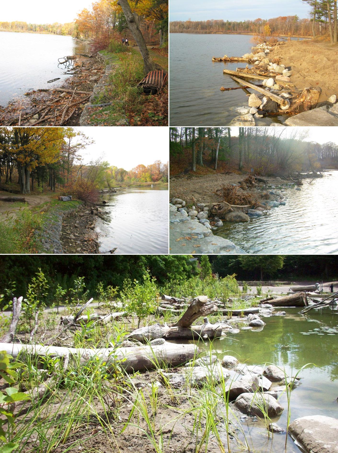 Heart Lake shoreline restoration project
