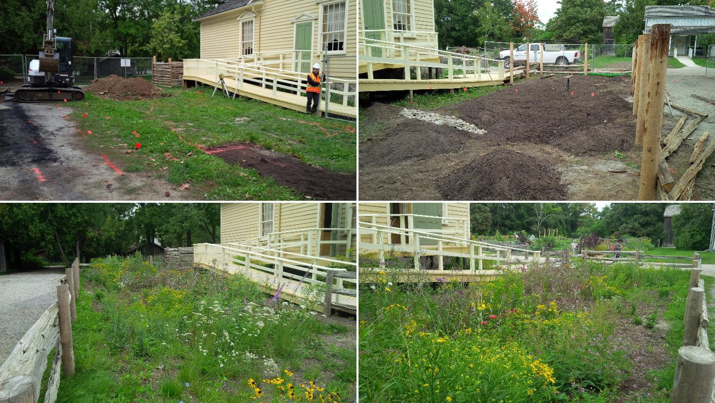 rain garden at Black Creek Pioneer Village