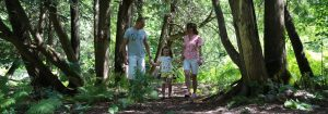 Parent and Tot Trail Walk - Discover the Forest @ Claremont Nature Centre