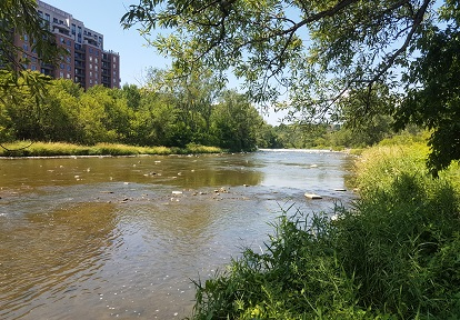 view of Humber River