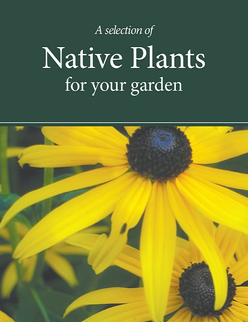 Native Plants fact sheet cover
