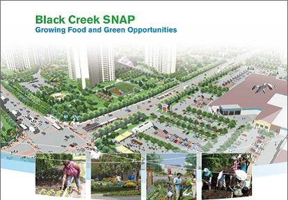Black Creek SNAP Summary cover page