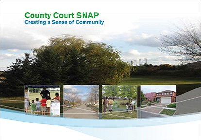 County Court SNAP Summary cover page
