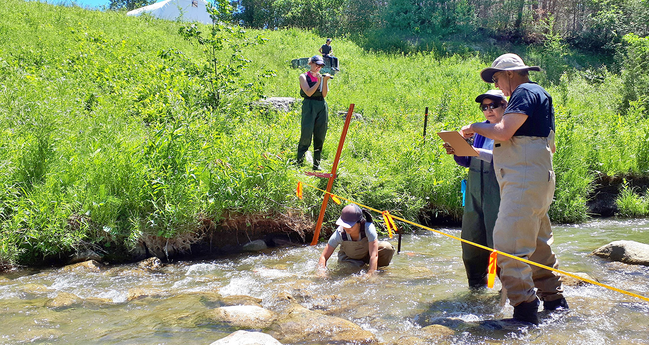 students take part in Ontario Stream Assessment Protocol course