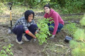 Girls Can Too Planting Event – Bramalea @ Knightsbridge Kings Cross Apartments and Chelsea Gardens