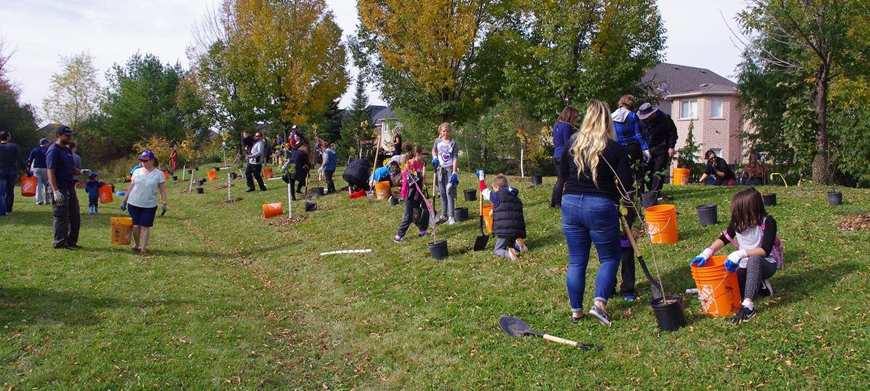 West Bolton SNAP neighbourhood tree planting event