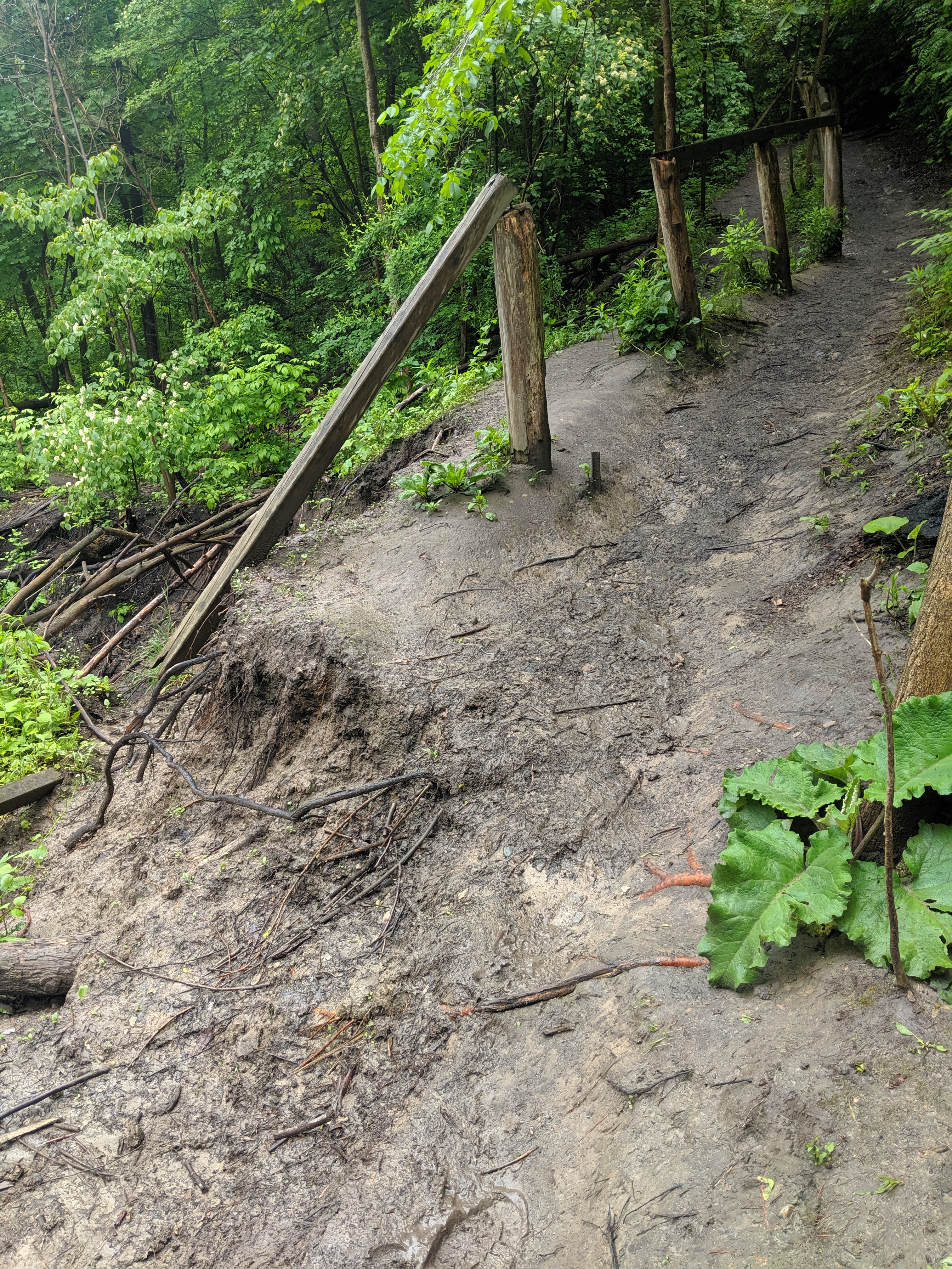 Toe erosion along the slope next to the outflanked channel has impacted a pedestrian trail and resulted in a public safety concern. Source: TRCA, 2019