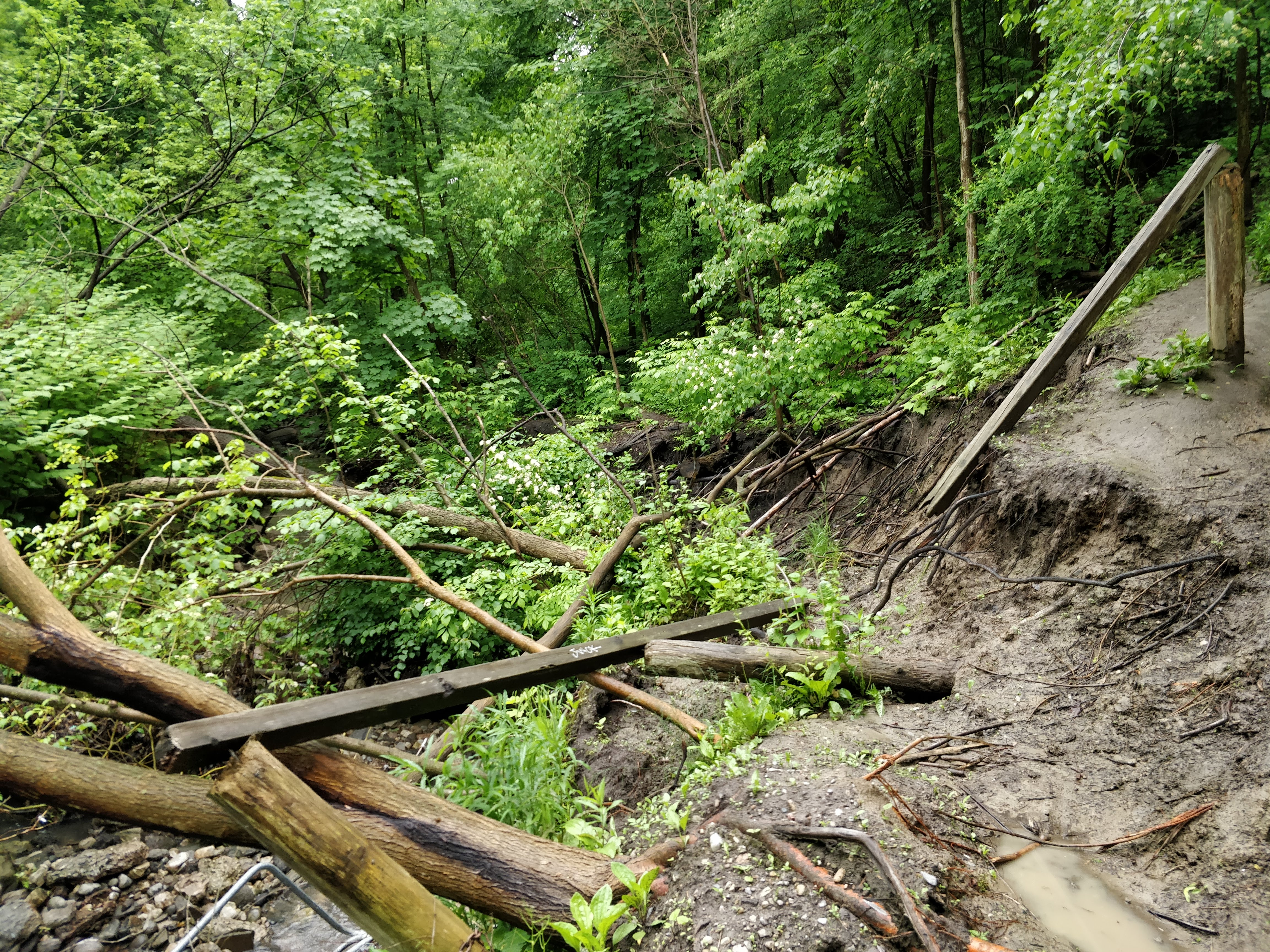 Elevated creek flows through the outflanked channel have resulted in significant erosion at the toe of the slope. Source: TRCA, 2019