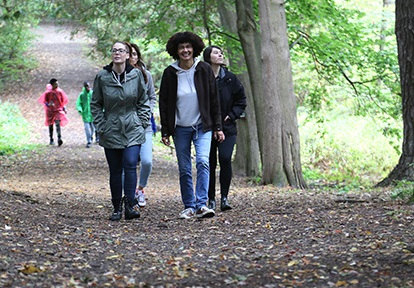 professional group explores forest trail during retreat at Albion Hills Field Centre