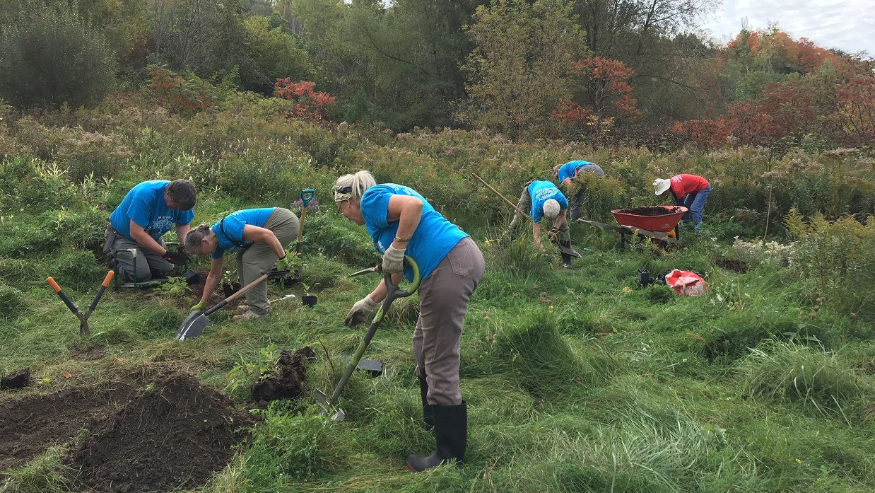 volunteers at East Don Valley stewardship event