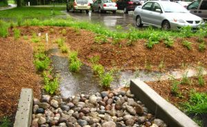 Building the business case for widespread green stormwater infrastructure @ Online