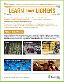 cover page of lichens e-learning worksheet