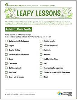 cover page of Leafy Lessons e-learning worksheet