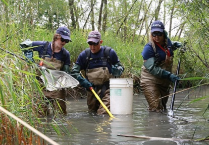 new Canadians participating in Newcomer Youth Green Economy Project conduct aquatic wildlife monitoring in local stream