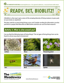 cover page of bioblitz e-learning resource