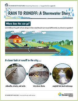 Rain to Runoff stormwater e-learning resource